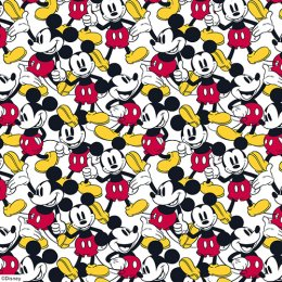 Mickey Mouse Blinds