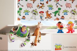 LL_2019_Disney-Toy-Story-Original-Characters_Cameo-Open_TM_Mail_1.jpg
