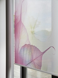 Luxaflex Roller Blinds 6